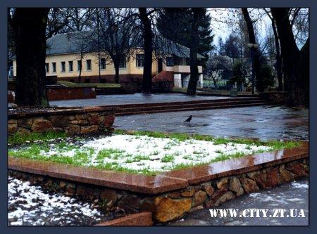 Житомирське СБУ викрило «міфічну реконструкцію» парку Ю.Гагаріна